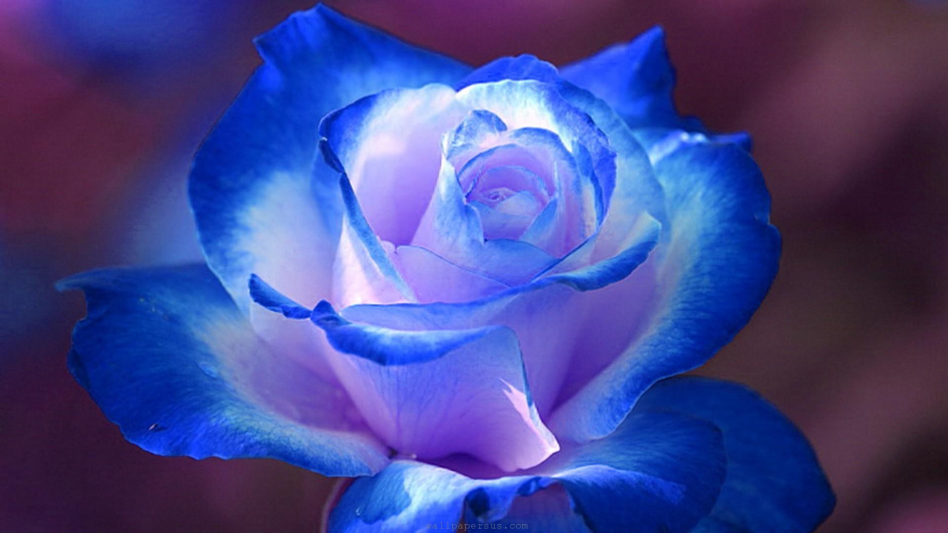 Blue: Part Two poem stories