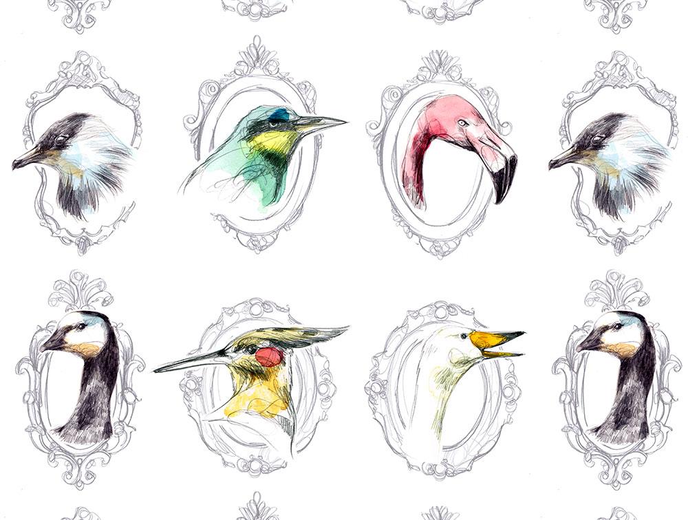 Señor pájaro stories