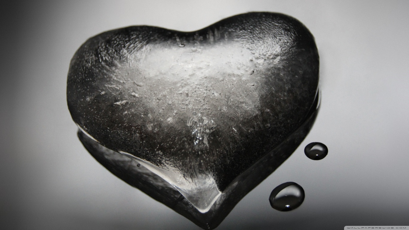 Love: noun /luhv/ (liking someone) love2016 stories