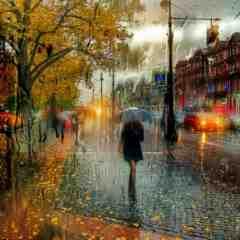 Rain,Rain. end stories