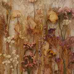 Memories flowers stories