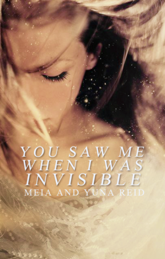 You Saw Me When I Was Invisible: Chapter 1 book stories